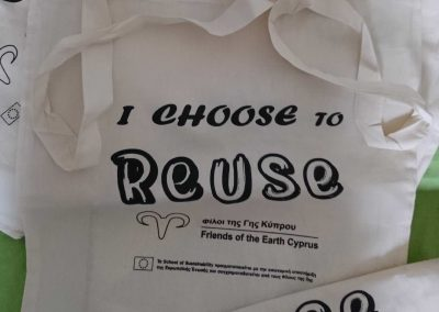 Tote Bag I Choose to Reuse